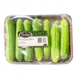 Mini Cucumbers / 小黄瓜~ 340g