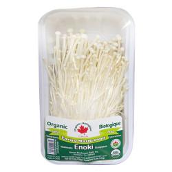 Organic fresh enviro mushrooms / 有机金针菇 - 150g