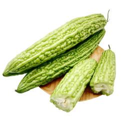 Bitter Melon / 苦瓜
