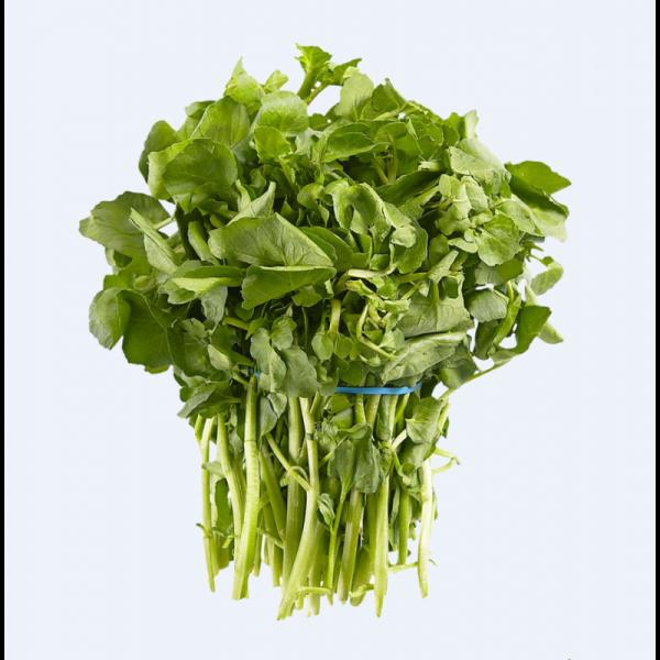 Watercress / 西洋菜