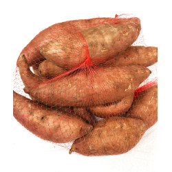 Sweet Potato / 黄皮番薯