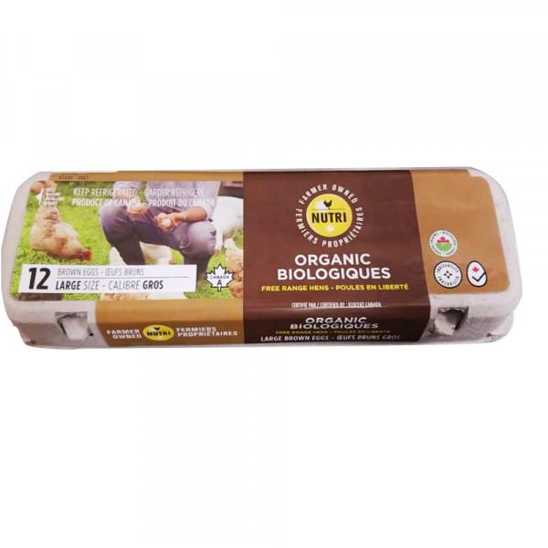 12 Large Eggs - Organic / 有机大鸡蛋