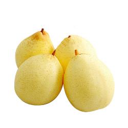 Ya Pears - 4 PCs / 鸭梨 - 4个