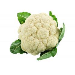 Cauliflower / 椰菜花(新鲜花菜)~ 1PC