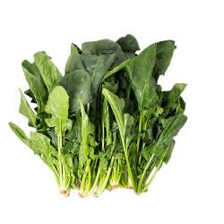 spinach / 新鲜菠菜~ 2lbs