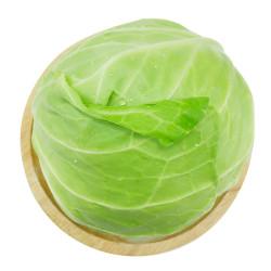Green Cabbage /高丽菜 ~ 3lbs
