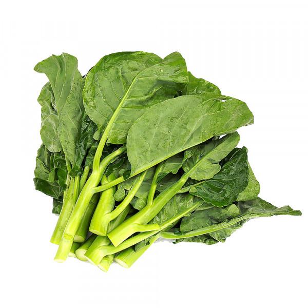 Chinese Broccoli / 中国芥兰~ 1.5lbs